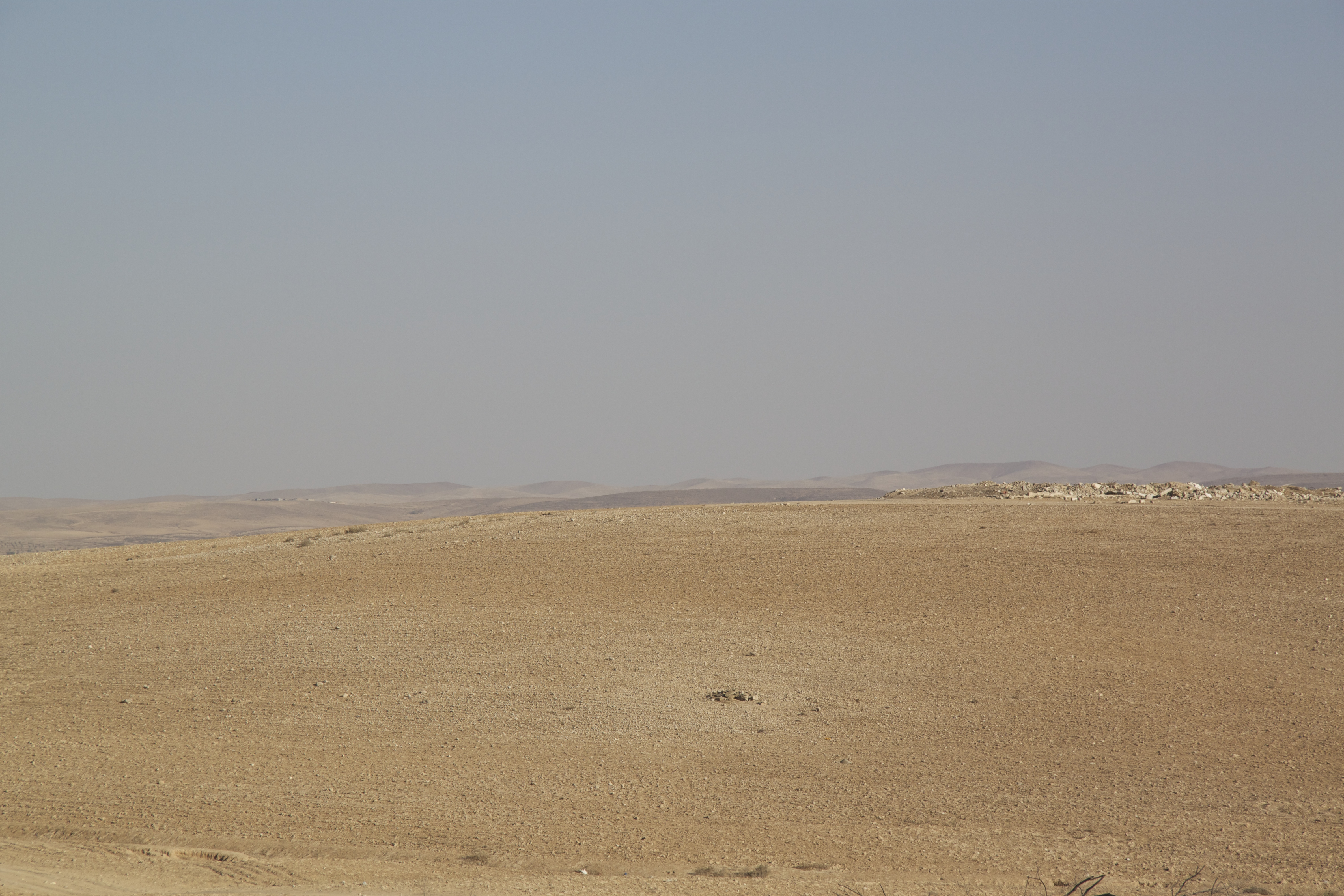 Yeela Raanan, beduiinien oikeuksien puolustaja